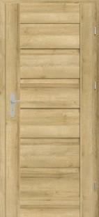 врата Магнетик мод.1